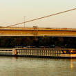 New Bridge and cruise ship, Bratislava, Slovakia — Stock Photo #11425271