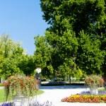 Garden of Grassalkovich Palace, Bratislava, Slovakia — Stock Photo #11425406