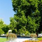 Garden of Grassalkovich Palace, Bratislava, Slovakia — Stock Photo #11425408