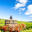 Vineyards of Cote de Beaune near Pommard, Burgundy, France — Stock Photo #11426012