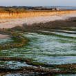 Coast of Oleron Island, Poitou-Charentes, France - Photo