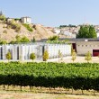 Stock Photo: Winery in LRioja, Spain