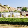 Winery in La Rioja, Spain — Stock Photo