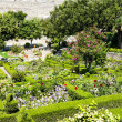 Stock Photo: Garden in Marvao, Alentejo, Portugal
