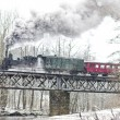 Steam train near Hradsko, Czech Republic — Stock Photo