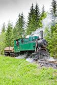 Steam train, Museum of Kysuce village, Vychylovka, Slovakia — Stock Photo