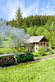Steam train and old saw mill, Museum of Kysuce village, Vychylov — Stock Photo
