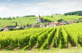 Hunawihr, Alsace, France — Stockfoto