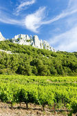 Vineyards near Gigondas at Col Du Cayron, Provence, France — Stock Photo