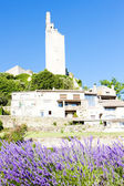Chamaret with lavender field, Drome Department, Rhone-Alpes, Fra — Stock Photo