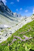 Valley under Prielom, Vysoke Tatry (High Tatras), Slovakia — Stock Photo