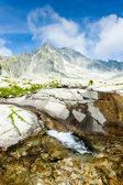 Small Cold Valley, Vysoke Tatry (High Tatras), Slovakia — Stock Photo