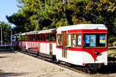 Narrow gauge railway, St-Troyan-Les-Bains, Poitou-Charentes, Fra — Stock Photo