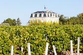 Chateau de la Tour, By, Bordeaux Region, France — Stock Photo