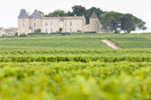 Vineyard and Chateau d'Yquem, Sauternes Region, France — Stock Photo