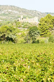 Castle in Durban-Corbiere with vineyards, Languedoc-Roussillon, — Stock Photo