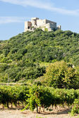 Castle Saint Martin with vineyard, Languedoc-Roussillon, France — Stock Photo