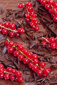 Red currant with chocolate — Stock Photo
