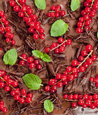 Red currant and mint with chocolate — Stock Photo