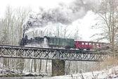 Steam train near Hradsko, Czech Republic — Stock Photo