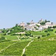 Stock Photo: Neive wth vineyards, Piedmont, Italy