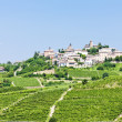 Neive wth vineyards, Piedmont, Italy - Stock Photo