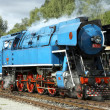 Steam locomotive called Parrot  , depot Luzna u Rakovnik - Stock Photo