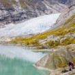 Nigardsbreen Glacier, Jostedalsbreen National Park, Norway — Stock Photo #11430973