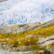 Nigardsbreen Glacier, Jostedalsbreen National Park, Norway — Stock Photo #11430976