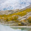 nigardsbreen gletscher jostedalsbreen-nationalpark, norwegen — Lizenzfreies Foto