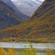 Jostedalsbreen National Park, Norway — Stock Photo #11430983