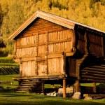 Uvdal Stavkirke, Norway — Stock Photo #11431075