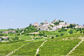 Neive wth vineyards, Piedmont, Italy — Stock Photo