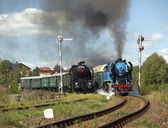 Steam trains from Krupa station, steam locomotive called Parrot — Stock Photo