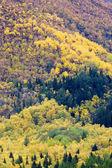 Landscape near Borgund Stavkirke, Norway — Stock Photo