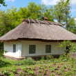 Ancient traditional ukrainian rural house — Stock Photo
