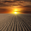 Sunset over ploughed field — Stock Photo #11753987