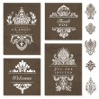 Vector White Victorian Ornament Set — Stock Vector #12308953