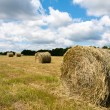 Haystack on a field — Stock Photo #11266209