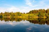 Summer scene on river — Stock Photo