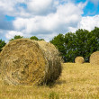 Haystacks — Stock Photo #12281022