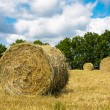 Stock Photo: Haystacks