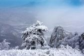 クリミア山脈の冬景色 — ストック写真