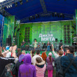 "Ethnic music ""Wild Mint"" Festival — Stockfoto"