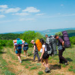 Hikers group walking — Stock Photo #11168991
