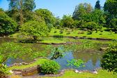Botanical Garden landscape — Stock Photo