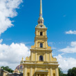Peter and Paul Cathedral — Lizenzfreies Foto