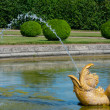 Golden fountain dolphin with flowing water. — Stock Photo