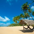tropical beach — Stock Photo #12136214
