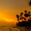 Beautiful tropical sunset — Stock Photo #12274853